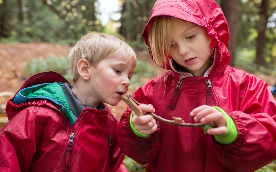 Into The Woods When Preschoolers Spend Every Class Outdoors The