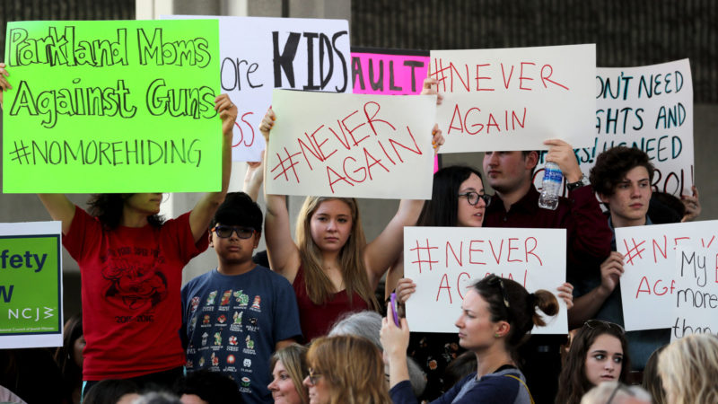 Wednesday rally to illustrate paradigm in firearm rights advocacy