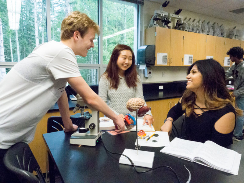 As part of their AP Psychology course, Tesla STEM juniors Connor Lotzkar, Christine Lee and Sarah Asad have created entries for a regional science and engineering fair.