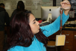 Eunice Millán prepares to measure the force of friction in a physics lab at Woodrow Wilson High School in Camden, New Jersey, which requires all students to take physics to graduate.