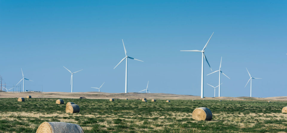 Wind turbines on private working ranch land near Kevin, Montana.