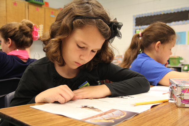 A student in Casi Adkinson's third grade class reads a non-fiction passage. Adkinson said that although the emphasis this year is on evidence-based writing, she still encourages students to add creativity to their writing. (Photo: Jackie Mader)