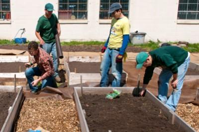 UW Oshkosh students tending to a community-based garden.