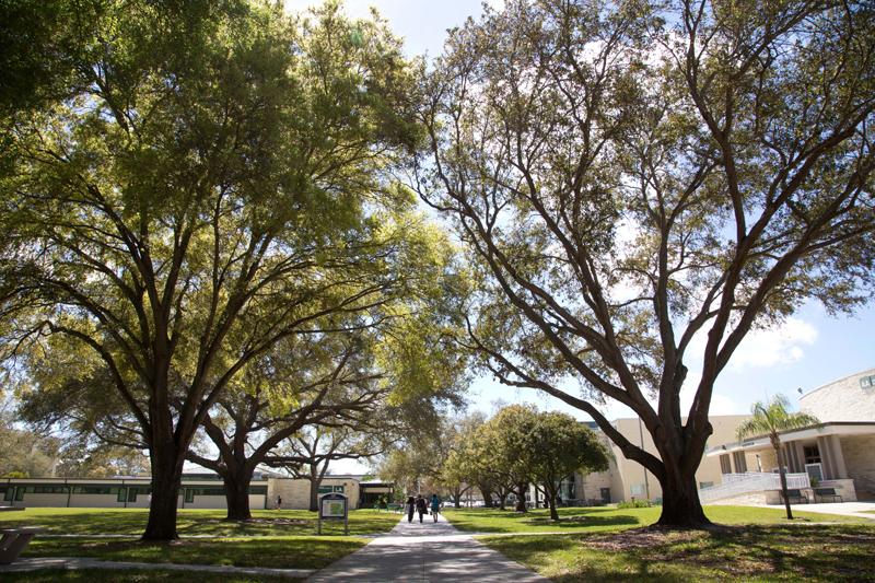 community college baccalaureate association