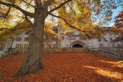 Indiana University, Bloomington (Photo by Justin Kern)